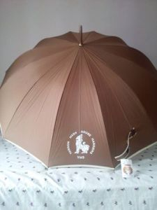 YH3 umbrella